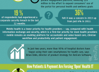 Patient Data Security is Serious Business: Says HIMSS13